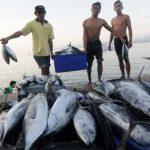 Mei 2019, Volume Ekspor Hasil Perikanan Sulsel Meningkat 602,8 Persen