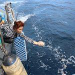 Konsisten Hentikan Penyelundupan, Menteri Susi Lepasliarkan 173.800 Benih Lobster di Bali