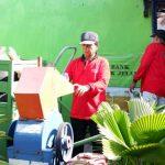 Kampung Hijau, Kurangi Sampah Plastik di Kota Surabaya