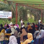 Tingkatkan Produktivitas, Koperasi Sawit Berkat Ridho Bermitra dengan Sinar Mas Agribusiness and Food untuk Peremajaan Kebun Sawit Masyarakat