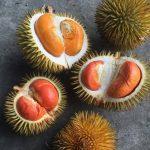 Kementan Bantu Petani Durian Lakukan Inovasi Penjualan Via Online, Dari Jawa Hingga Papua