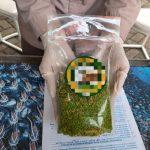 Karantina Pertanian Surabaya Fasilitasi Ekspor Perdana Beras Konjac ke Korea Selatan