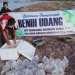 KKP Salurkan Bantuan Benih Bermutu Pastikan Kualitas Produksi Budidaya