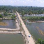 KKP Segera Bangun Model Klaster Tambak Udang Nasional di Aceh Timur