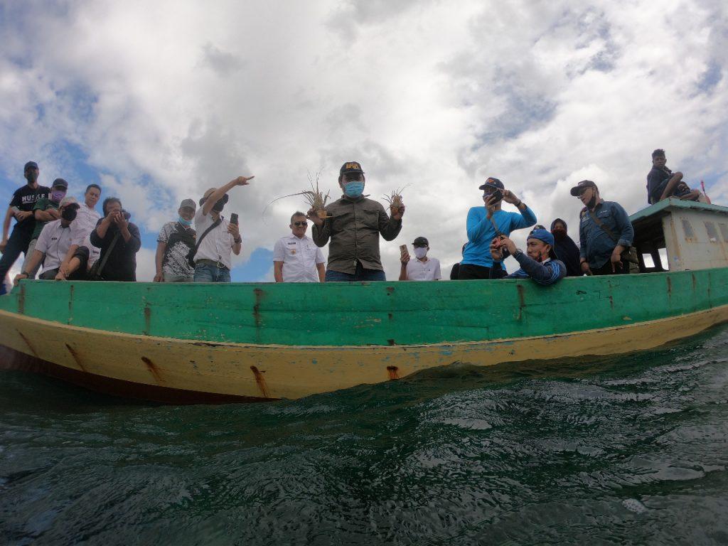 Lagi, KKP Lepasliarkan Lobster Hasil Budidaya di Konawe Selatan 1