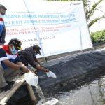 Pertamina RU Cilacap Tabur 60.000 Benih Udang Windu & 20.000 Bandeng dengan Teknologi Polikultur Biofilter