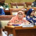 Presiden Marah Saat Evaluasi Menteri, Netty Aher: Kenapa Baru Jengkel Sekarang?
