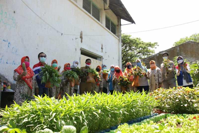 Dukung Ketahanan Pangan di Era Pandemi, Pertamina Panen Sayuran Hidroponik di Makassar 1
